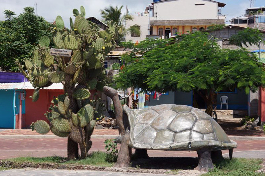 Quo_Galapagos_Giant_Tortoise_Statue